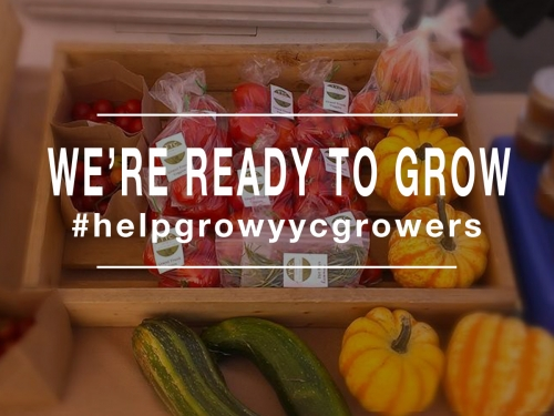 yycgrowers prelaunch 02